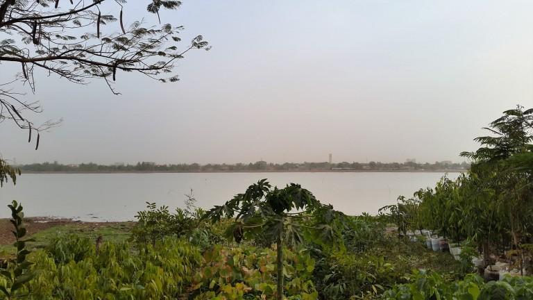 Florist lake