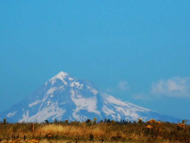 Mt Hood from Powell Butte 640